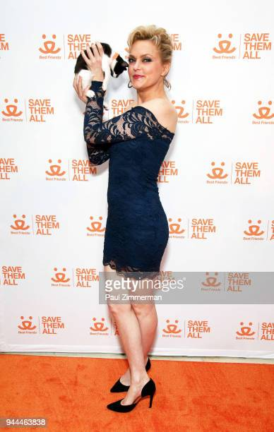 Actress Elaine Hendrix attends 3rd Annual Best Friends Animal Society New York City Gala at Guastavino's on April 10 2018 in New York City