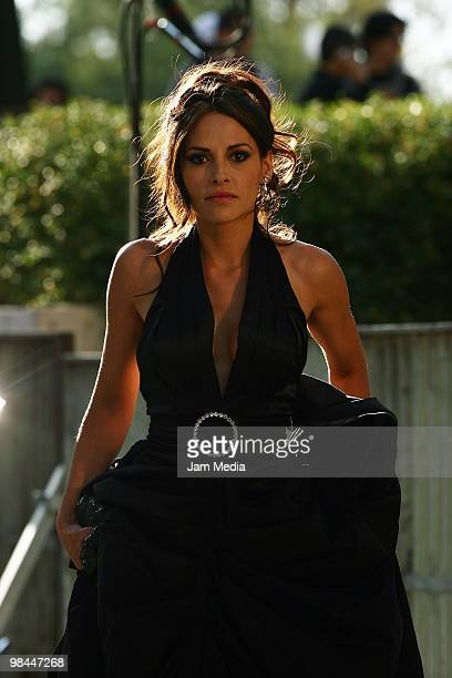 Actress Elizabeth Cervantes poses during the red carpet of the 52nd Ariel Awards 2010 at the Sala Nezahualcoyotl on April 13 2010 in Mexico City...