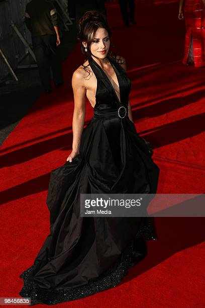 Actress Elizabeth Cervantes poses during the red carpet of the 52nd Ariel Awards 2010 at the Sala Nezahualcoyotl on April 13, 2010 in Mexico City,...