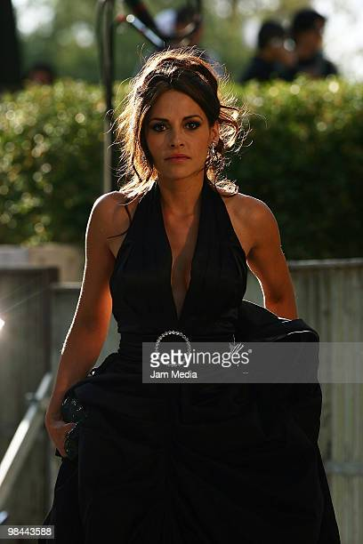 Actress Elizabeth Cervantes poses for a photo at the red carpet of the 2010 Ariel Awards 2010 at Sala Nezahualcoyotl on April 13 2010 in Mexico City...