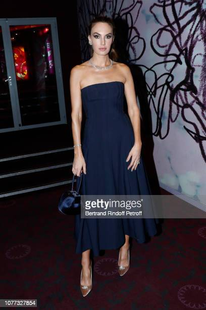 Actress Elizabeth Chambers dressed in Gabriela Hearst attends the Une Femme d'Exception On the Basis of Sex Paris Premiere at Cinema Gaumont Capucine...