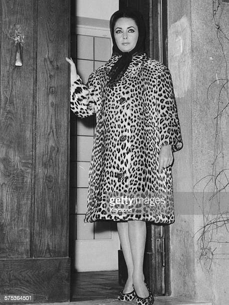 Actress Elizabeth Taylor wears a head scarf and leopard print coat as she arrives home after a stay in hospital where she suffered from food...