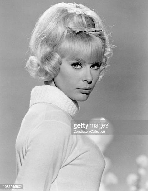 "Actress Elke Sommer in a scene from the movie ""The Art of Love"""