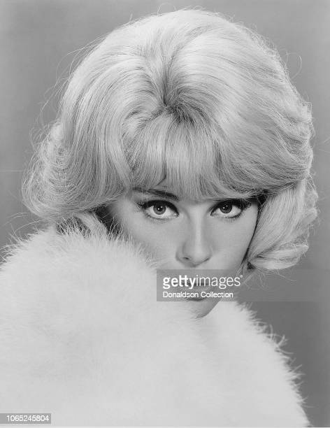 "Actress Elke Sommer in a scene from the movie ""The Money Trap"""