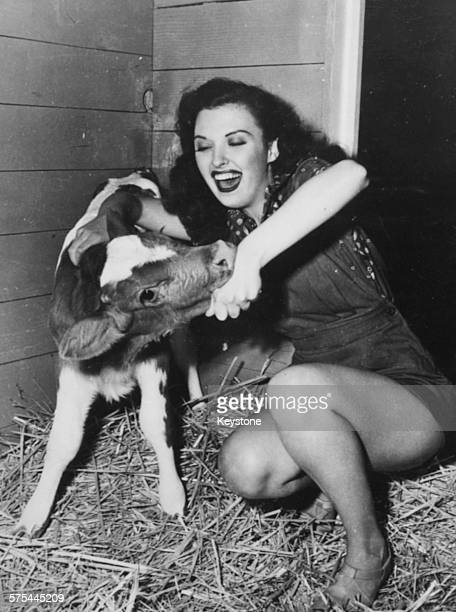 Actress Ella Raines playing with a calf in a barn circa 1945