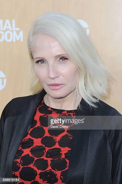 Actress Ellen Barkin attends TNT's Animal Kingdom Premiere at The Rose Room on June 8 2016 in Venice California