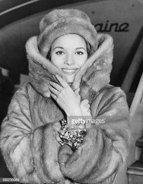 Actress Elsa Martinelli wearing a fur coat and hat soon to star in the film 'The VIP's' arriving at London Airport February 16th 1963
