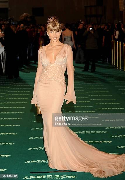 Actress Elsa Pataky arrives to the Goya 2008 Cinema Awards Ceremony at the Palacio de Congresos on Febraury 3 2008 in Madrid Spain