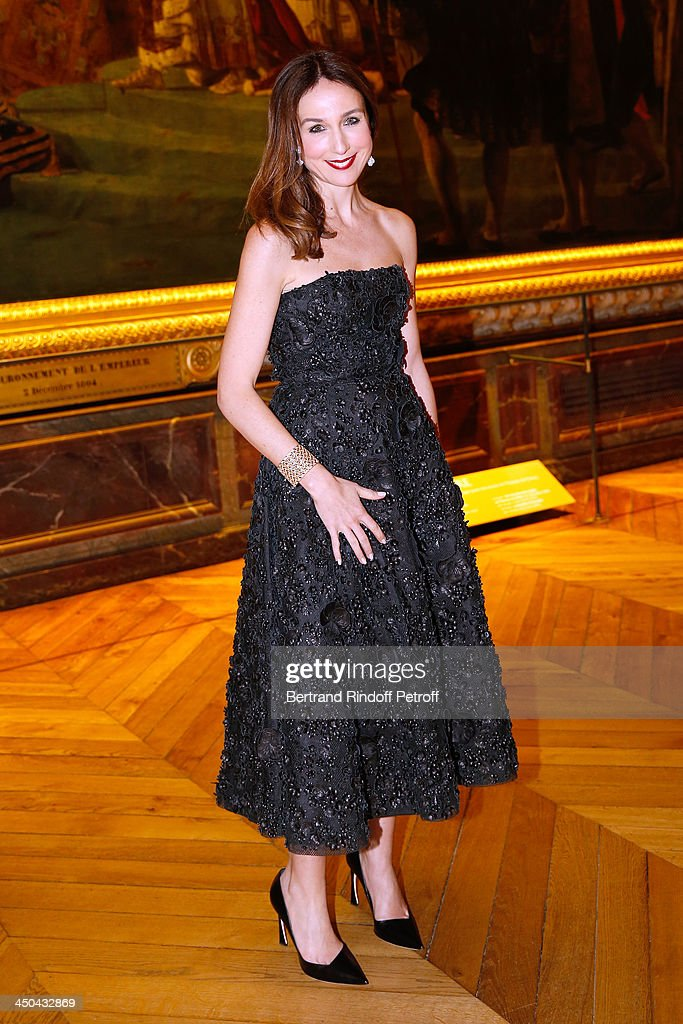 Actress Elsa Zylberstein dressed in Dior, attends Pasteur-Weizmann Gala at at Chateau de Versailles on November 18, 2013 in Versailles, France.