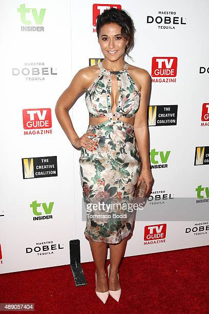 Actress Emmanuelle Chriqui attends the Television Industry Advocacy Awards benefiting The Creative Coalition in Partnership With TV Guide Magazine...