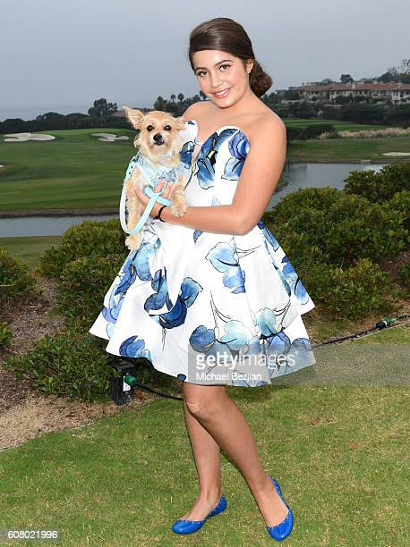 Actress Emmy Perry attends All About the Animals Homeless to Haute Gala at Monarch Beach Resort on September 18, 2016 in Dana Point, California.