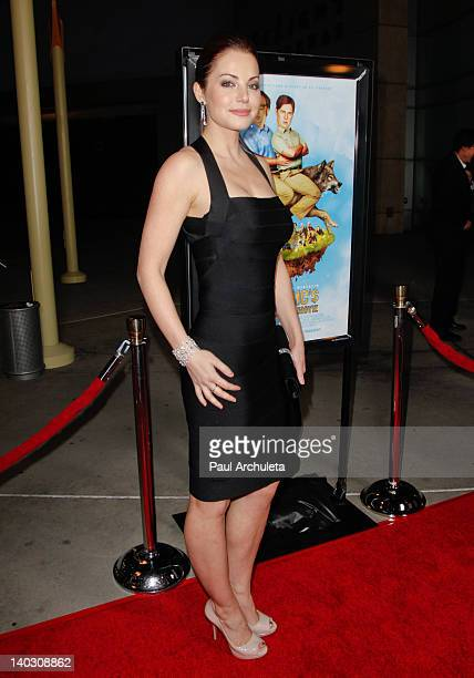 Actress Erica Durance attends the 'Tim Eric'$ Billion Dollar Movie' Los Angeles premiere at the ArcLight Hollywood on March 1 2012 in Hollywood...