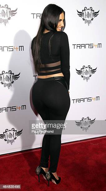 Actress Estrella Nouri attends william TRANS4M Benefit Concert at Avalon on January 23 2014 in Hollywood California
