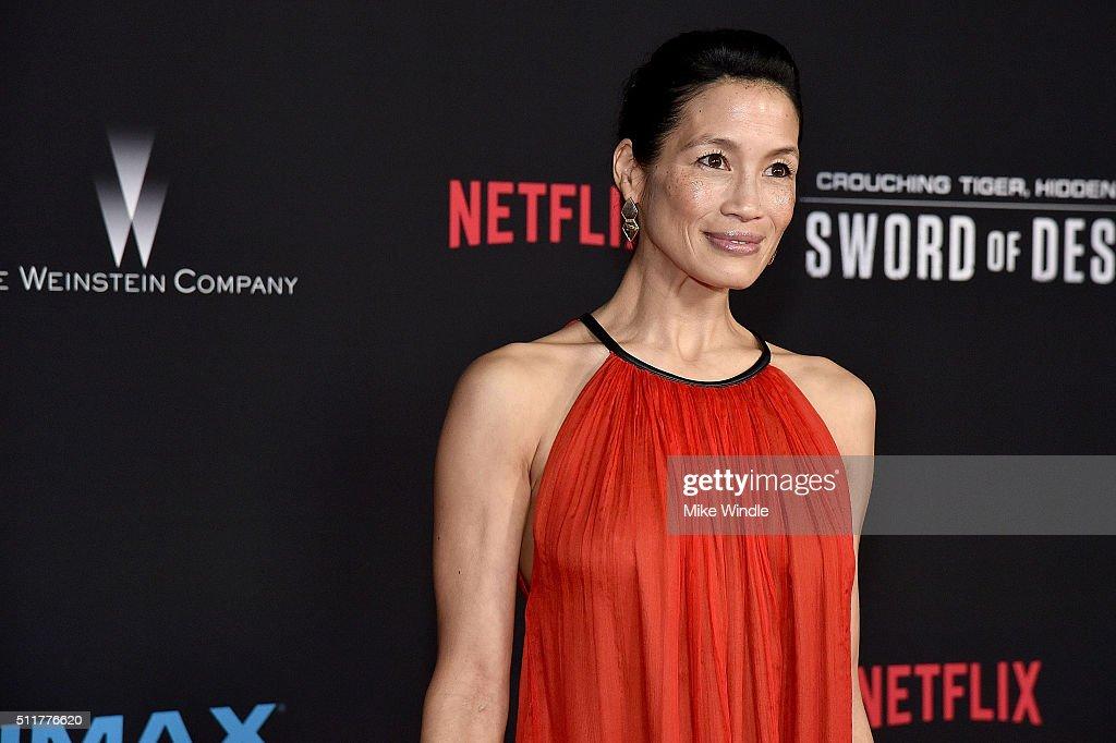 """Premiere Of Netflix's """"Crouching Tiger, Hidden Dragon: Sword Of Destiny"""" - Arrivals : Fotografía de noticias"""