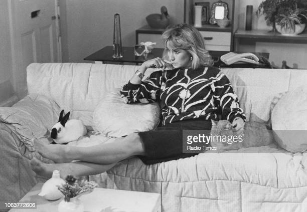 Actress Felicity Kendal sitting with a pet rabbit and cat in a scene from series 1 episode 6 of the television series 'The Mistress' November 2nd 1986