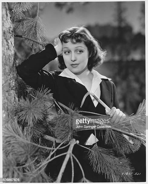 Actress Frances Drake Leaning Against a Pine Tree