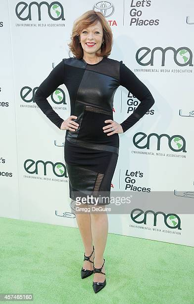 Actress Frances Fisher arrives at the 2014 Environmental Media Awards at Warner Bros Studios on October 18 2014 in Burbank California