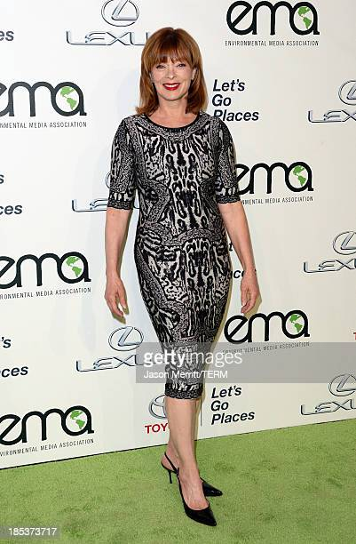Actress Frances Fisher arrives at the 23rd Annual Environmental Media Awards presented by Toyota and Lexus at Warner Bros Studios on October 19 2013...