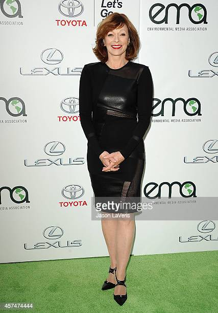 Actress Frances Fisher attends the 2014 Environmental Media Awards at Warner Bros Studios on October 18 2014 in Burbank California