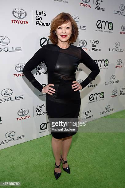 Actress Frances Fisher attends the Glad Food Protection Products Food Fairy Tales on EMA Green Carpet at Warner Bros Studio on October 18 2014 in...