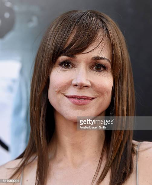 Actress Frances O'Connor arrives at the 2016 Los Angeles Film Festival - 'The Conjuring 2' Premiere at TCL Chinese Theatre IMAX on June 7, 2016 in...