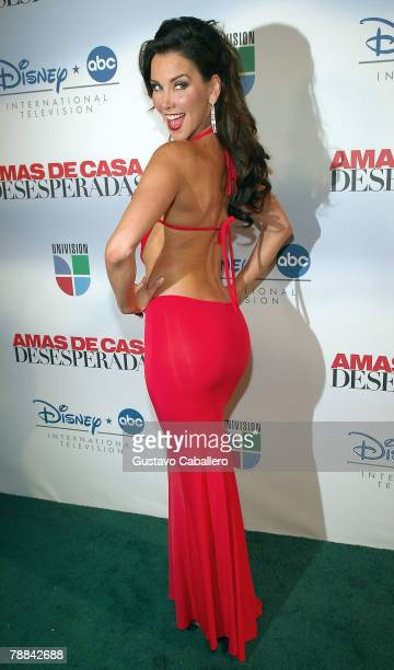 Actress Gabriela Vergara poses at the launch party for Amas de Casa Desesperadas at Karu Y on January 8 2008 in Miami Florida