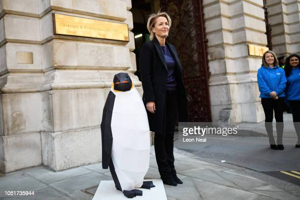 Actress Gillian Anderson takes part in a photocall as Greenpeace hand a petition of over 30000 signatures calling for protection of the Antartica at...