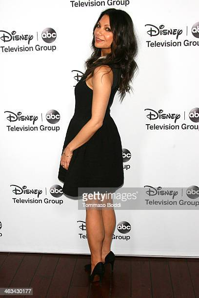 Actress Ginger Gonzaga attends the Disney ABC Television Group's 2014 winter TCA party held at The Langham Huntington Hotel and Spa on January 17...