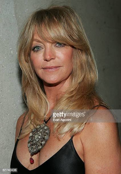 Actress Goldie Hawn attends the White House Correspondents dinner at the Washington Hilton Hotel April 30 2005 in Washington DC