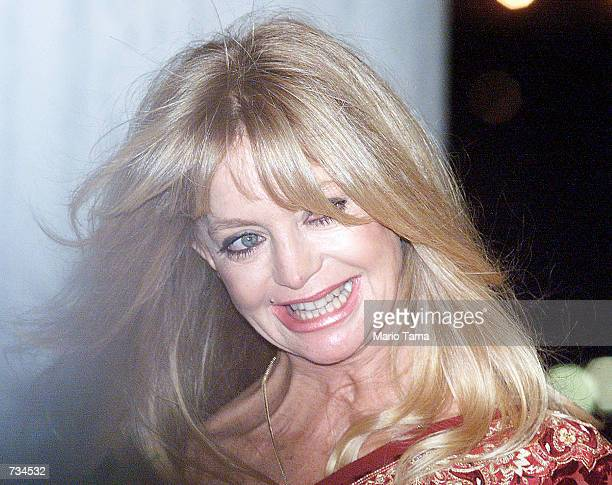 Actress Goldie Hawn enters the Plaza Hotel to attend the wedding of Michael Douglas and Catherine ZetaJones November 18 2000 in New York City
