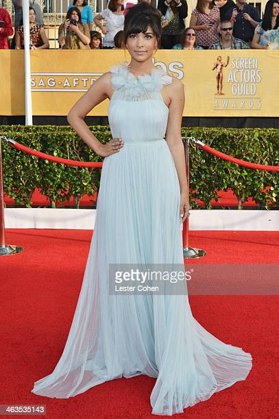 Actress Hannah Simone attends the 20th Annual Screen Actors Guild Awards at The Shrine Auditorium on January 18, 2014 in Los Angeles, California.