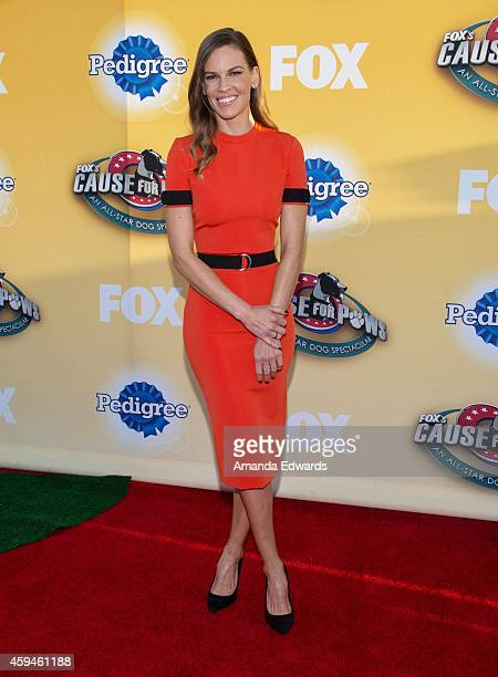 Actress Hilary Swank arrives at FOX's Cause For Paws An AllStar Dog Spectacular at The Barker Hanger on November 22 2014 in Santa Monica California