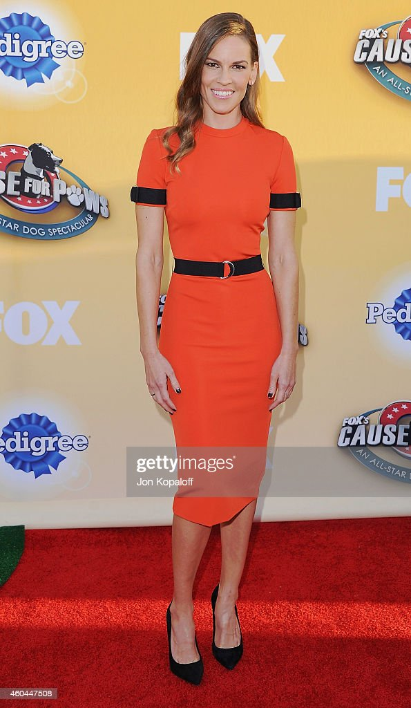 Actress Hilary Swank arrives at FOX's Cause For Paws: An All-Star Dog Spectacular at The Barker Hanger on November 22, 2014 in Santa Monica, California.