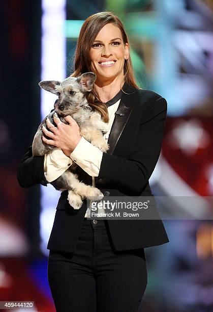 Actress Hilary Swank attends Fox's Cause For Paws All Star Dog Spectacular at Barker Hangar on November 22 2014 in Santa Monica California