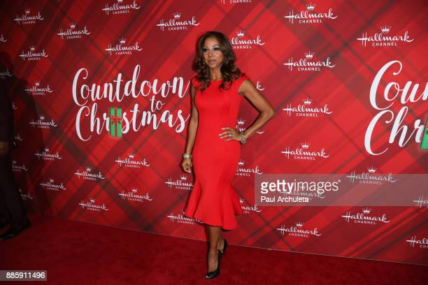 Actress Holly Robinson Peete attends the Hallmark Channel's Countdown To Christmas Celebration and VIP screening of Christmas At Holly Lodge at The...