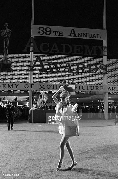 Actress Inger Stevens in a short skirt outside the Academy Awards Ceremony in Santa Monica covers her head with an Academy Awards program 1967