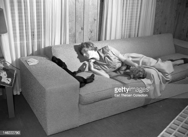 Actress Ingrid Bergman poses for a portrait with her dogs in her dressing room in April 1948 in Los Angeles, California.