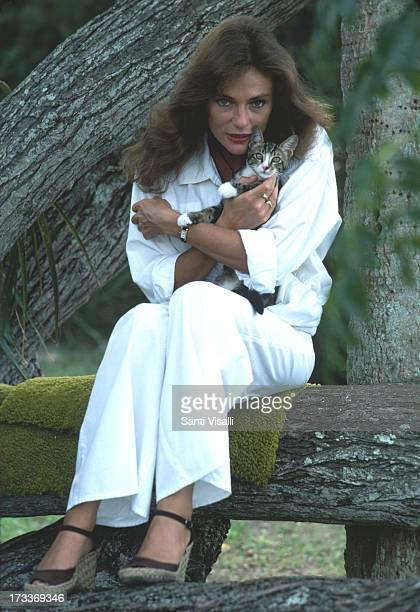 Actress Jacqueline Bisset posing for a portrait with a cat on November 51976 in Hamilton Bermuda