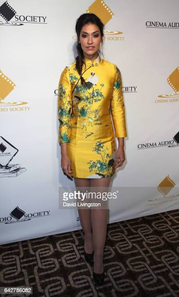 Actress Janina Gavankar attends the 53rd Annual Cinema Audio Society Awards at Omni Los Angeles Hotel at California Plaza on February 18 2017 in Los...