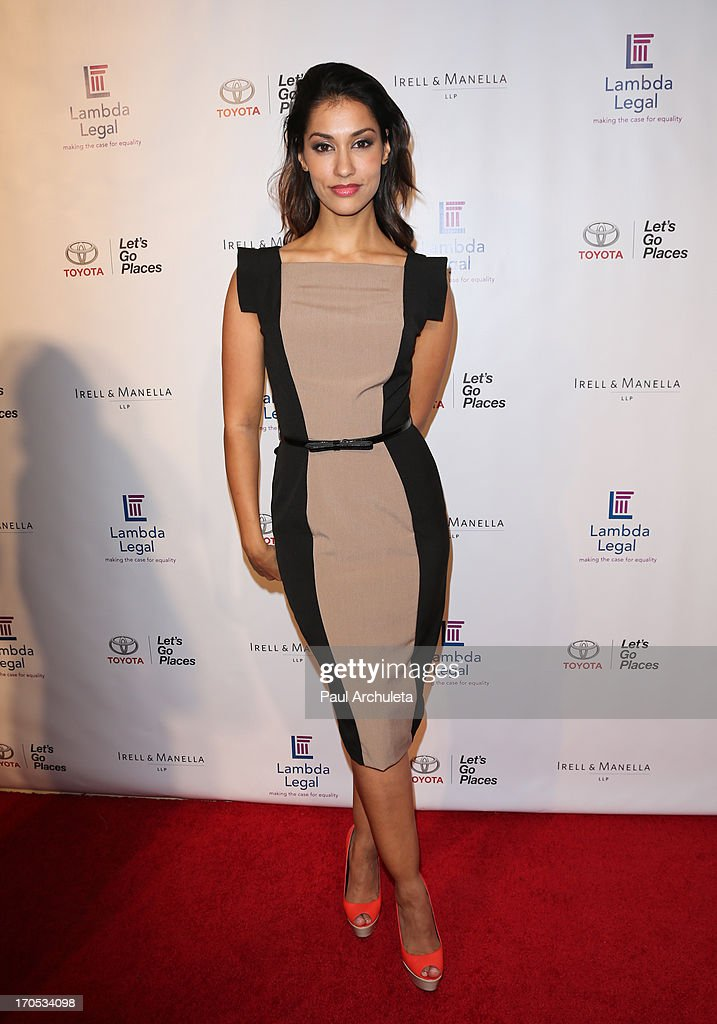 Actress Janina Gavankar attends the West Coast Liberty Awards celebrating Lambda Legal's 40th anniversary at The London Hotel on June 13, 2013 in West Hollywood, California.