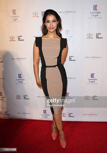 Actress Janina Gavankar attends the West Coast Liberty Awards celebrating Lambda Legal's 40th anniversary at The London Hotel on June 13 2013 in West...