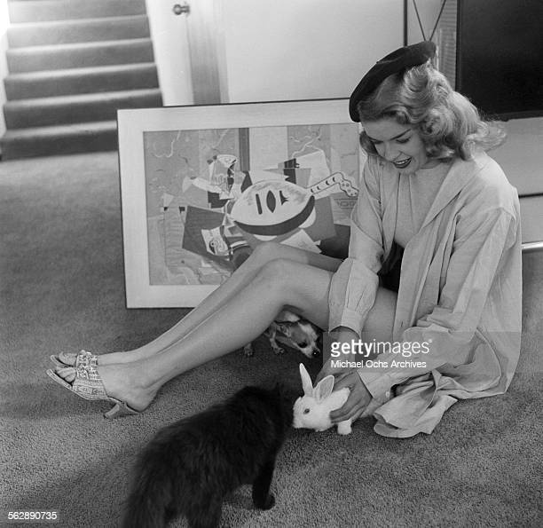 Actress Jayne Mansfield poses with her rabbit and cat at home in Los AngelesCalifornia