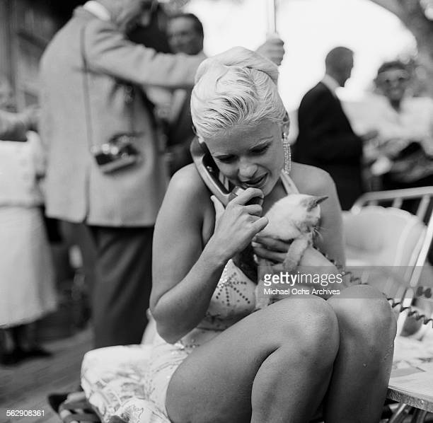Actress Jayne Mansfield talks on the phone as she gets ready for a photo shoot in a pool in Los AngelesCalifornia