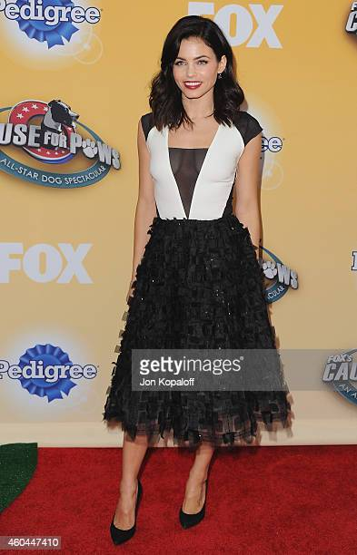 Actress Jenna Dewan Tatum arrives at FOX's Cause For Paws: An All-Star Dog Spectacular at The Barker Hanger on November 22, 2014 in Santa Monica,...