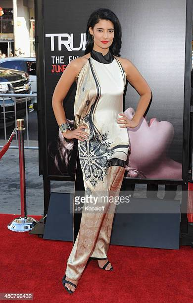Actress Jessica Clark arrives at HBO's 'True Blood' Final Season Premiere at TCL Chinese Theatre on June 17 2014 in Hollywood California