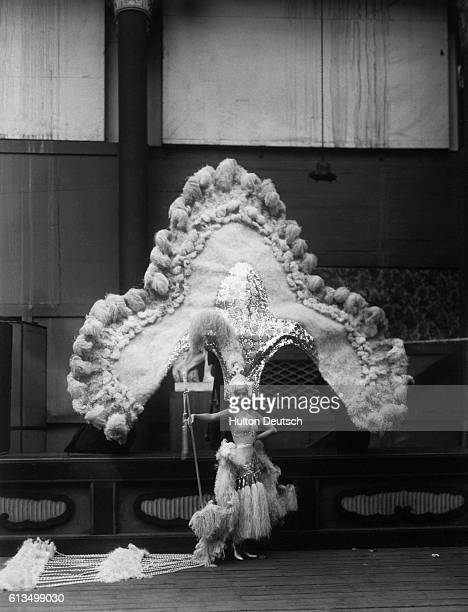 Actress Jessie Mathews wearing an enormous headdress in Charles B Cochran's new show Evergreen 1930