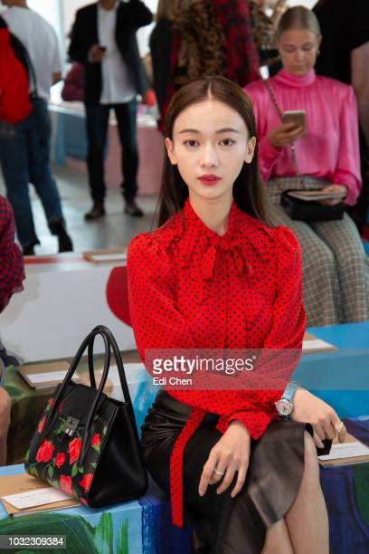 Actress Jinyan Wu attends the MICHAEL KORS COLLECTION Spring 2019 Runway Show Asia Pacific Front Row Faces at Pier 17 on September 12 2018 in New...
