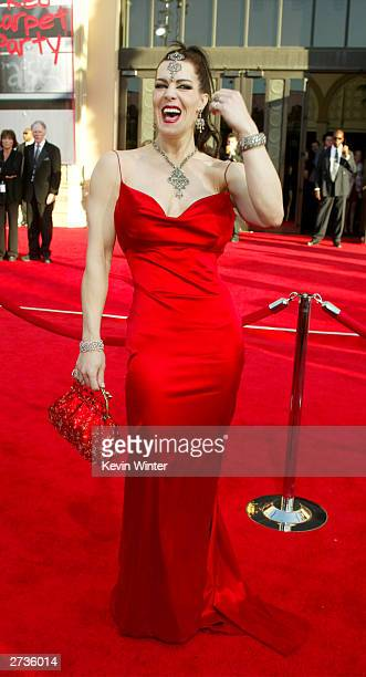 Actress Joanie Laurer attends the 31st Annual American Music Awards at The Shrine Auditorium November 16 2003 in Los Angeles California
