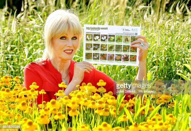 Actress Joanna Lumley holds a Marks and Spencer sponsored Big Butterfly Count chart which they hope customers will take away from 20th July until...