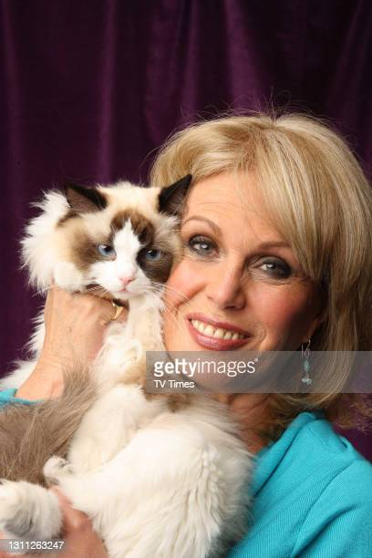Joanna Lumley posed with cat TVT on September 5, 2009.